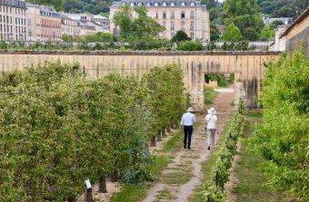 Balade à Versailles hors des sentiers battus