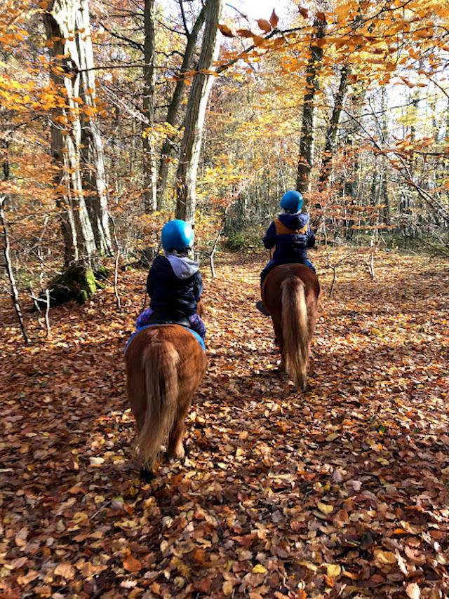 Balade à poney avec Epona Club en forêt de Saint-Germain-en-Laye / © Epona Club