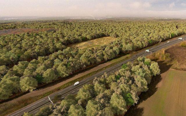 La future forêt de Pierrelaye-Bessancourt traversée par l'A15 dans le Val-d'Oise / © Land'Act - smapp