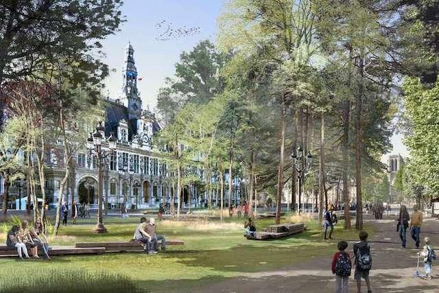 Projet de forêt urbaine sur le parvis de l'Hôtel de Ville à Paris / © Apur – Céline Orsingher