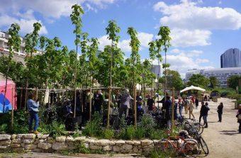 Plantez des arbres au pied des tours de La Défense à Nanterre