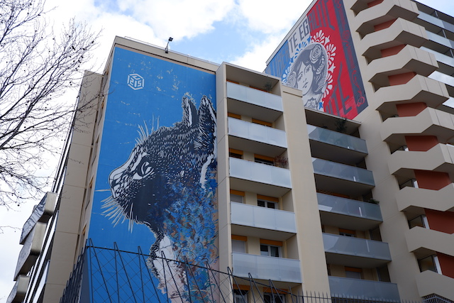 C215 et Shepard Fairey / © Solenn Cordroc'h pour Enlarge your Paris