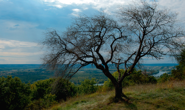 Espace naturel de La Roche-Guyon dans le Val-d'Oise / © AEV / Fabien Chenel - L'Agence Nature