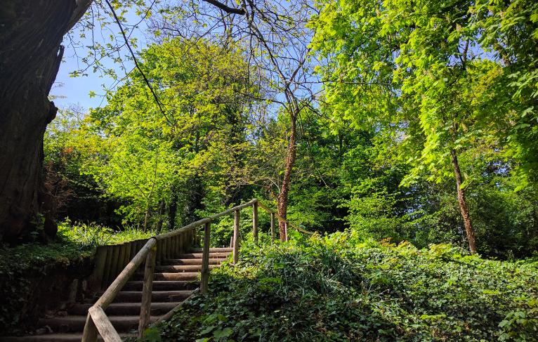 Le parc Henri Sellier au Plessis-Robinson / © Helloways