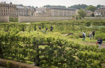 Le Potager du Roi à Versailles, un éco-campus pour penser le XXIe siècle