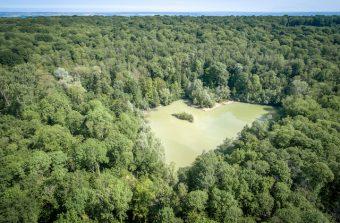 Les parcs naturels d'Île-de-France, 2700 km2 de verdure aux portes de Paris