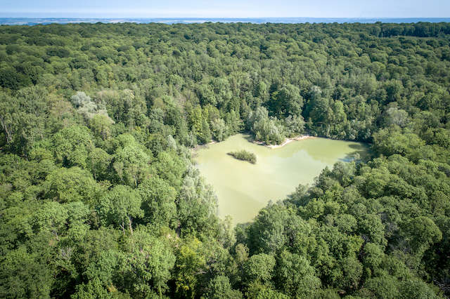 Lac Bleu dans la forêt de Carnelle dans le parc naturel Oise - Pays de France / © PNR Oise - Pays de France
