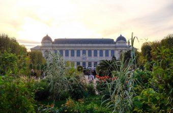 Une historienne et un paysagiste vous font faire le tour des jardins remarquables du Grand Paris