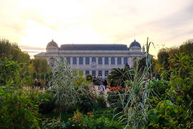 Le Jardin des Plantes à Paris / © Julien Chatelain (Creative commons - Flickr)