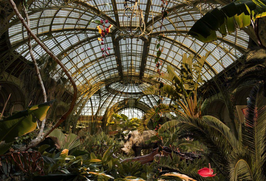 Le Grand Palais à Paris / © Chris Morin Eitner