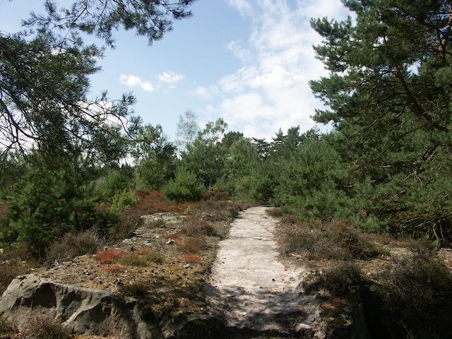 Le sentier de la Pierre Monconseil dans le parc naturel Oise - PAys de France / © PNR Oise - Pays de France