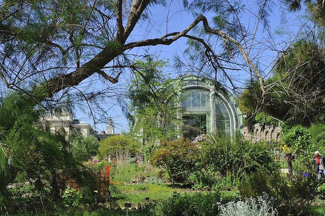 L'une des serres du Jardin des Plantes à Paris / © Rog01 (Creative commons - Flickr)
