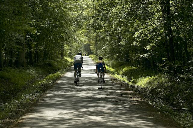 La forêt de Sénart (Essonne), 3000 ha (130 x le jardin du Luxembourg) accessibles par le RER D / © ONF