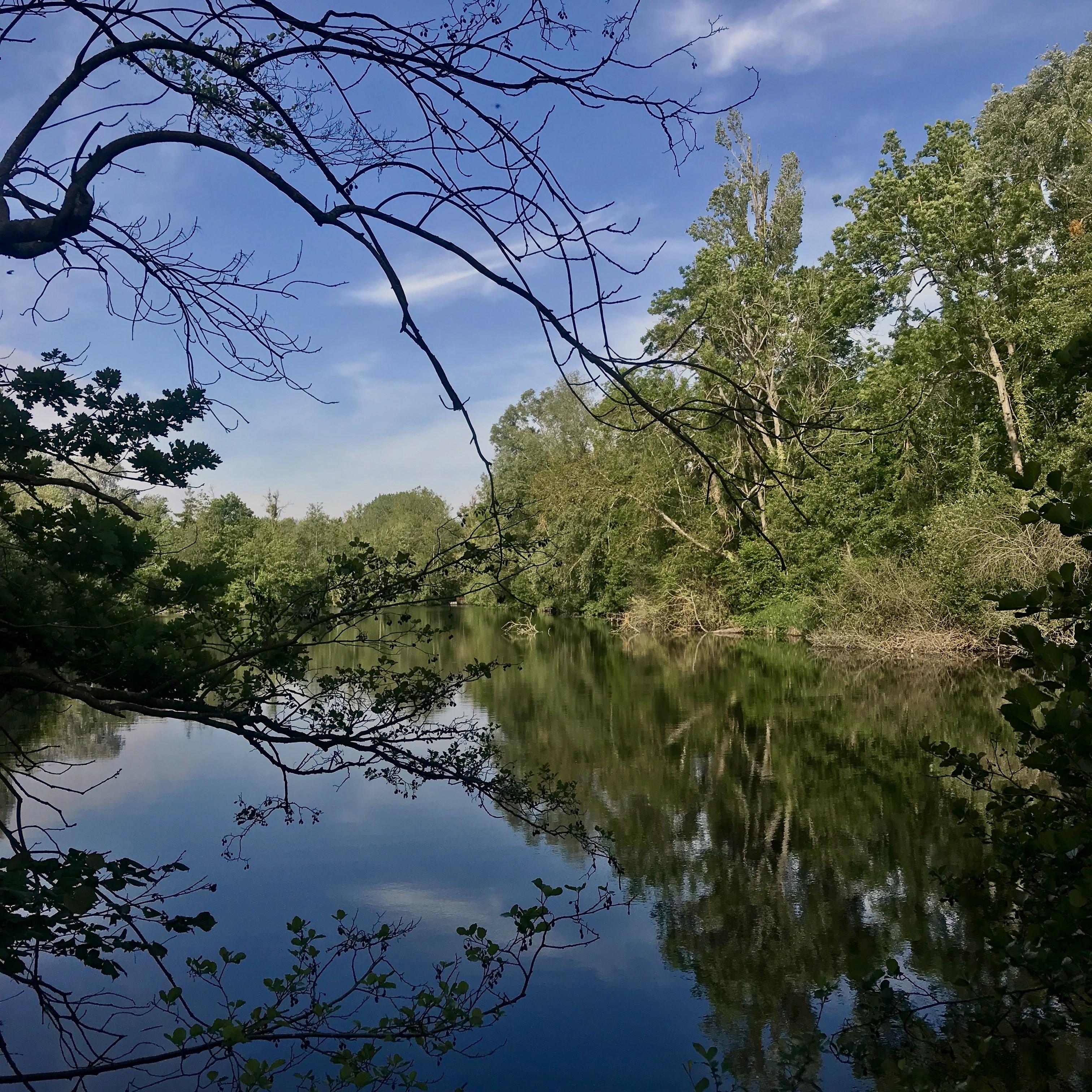 Les marais de l'Essonne (91)