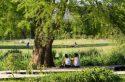 Vincennes et Boulogne, deux bois qui gagnent à être connus