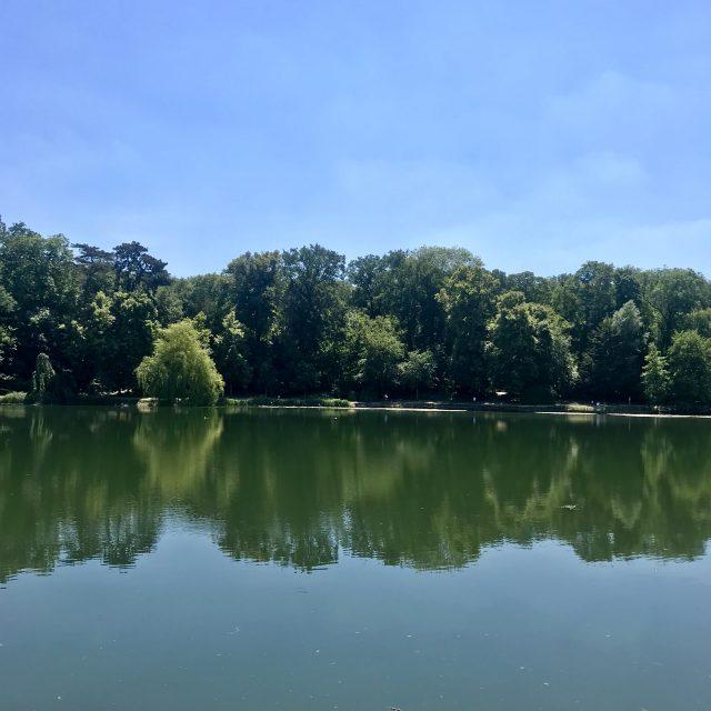 Les étangs de Corot en forêt de Fausses-Reposes, accessibles par la gare de Ville-d'Avray (Lignes L et U) / ©. Vianney Delourme pour Enlarge your Paris