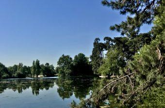Balade au fil de l'eau dans le bois de Boulogne et le parc de Saint-Cloud