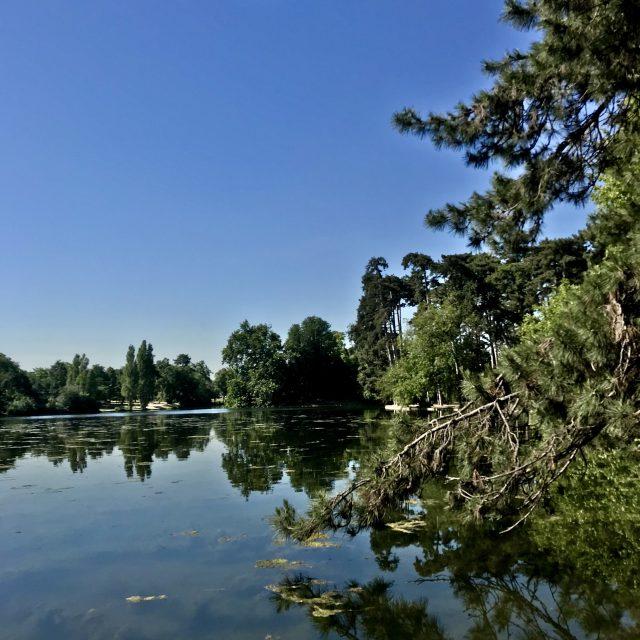 Le Lac inférieur du bois de Boulogne / © Vianney Delourme pour Enlarge your Paris