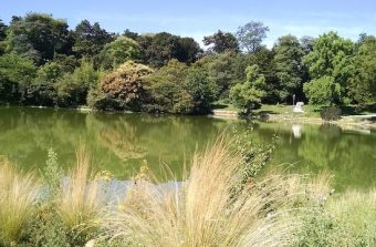 Balade au parc Montsouris, ce point chaud de la biodiversité parisienne