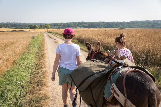 Sur les routes du Vexin avec Ânes en Vexin / © Bruno Beucher - Conseil départemental du Val-d'Oise