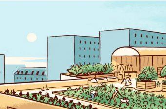 BD : Pourquoi mettre des fermes dans les villes ?