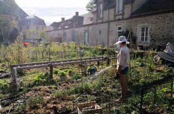 Se cultiver tout en cultivant la terre en Île-de-France avec le wwoofing