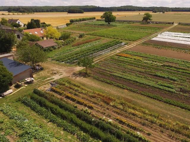 Les Jardins de Courance en Essonne / © Les Jardins de Courance