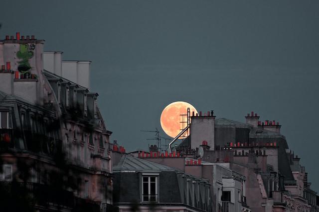 Tout l'été, l'Association française d'astronomie organise des soirées dans les parcs parisiens pour observer la voûte céleste / © Fabio Margherita (Creative commons - Flickr)