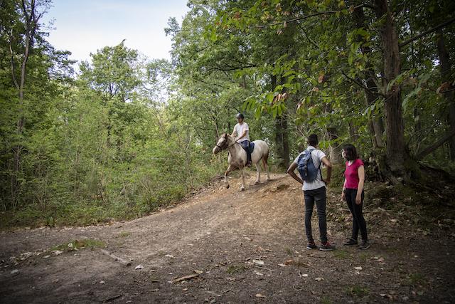 Jour 4. Allée cavalière dans le Parc naturel de la Haute Vallée de Chevreuse, le long de la ligne 18 / © Jéromine Derigny pour Enlarge your Paris