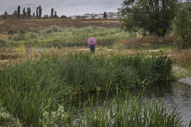 Jour 1. La rivière du Crould, entre Gonesse et Bonneuil, près de l'aéroport du Bourget.  Une coulée verte permet de rejoindre le nord du parc Georges-Valbon à La Courneuve / © Jérômine Derigny pour Enlarge your Paris