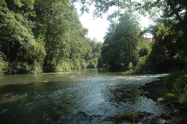 La rivière du Grand Morin dans le futur Parc naturel de la Brie et des deux Morin en Seine-et-Marne / © Gilles Raimbault (Creative commons - Flickr)