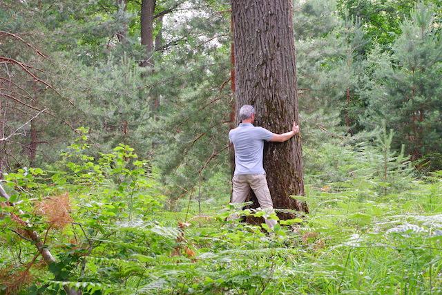 Bain de forêt en forêt de Fontainebleau / © Solenn Cordroc'h pour Enlarge your Paris