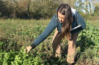 De guide à Paris à paysanne herboriste en Seine-et-Marne, Pauline Isambert raconte