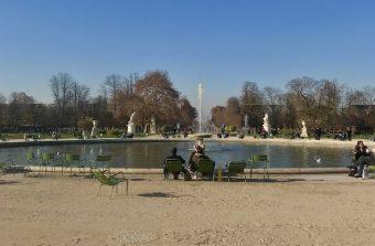 Un appel aux dons pour planter des arbres aux Tuileries à Paris