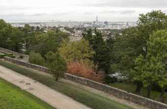 Les Rencontres de l'arbre en ville, un an pour penser la place de la nature dans le Grand Paris