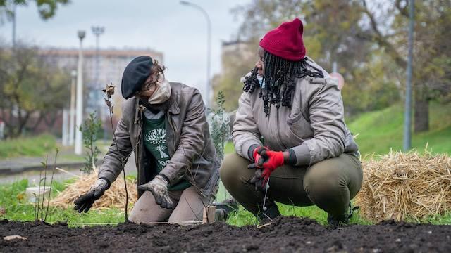 Des bénévoles de l'association Boomforest / © Boomforest