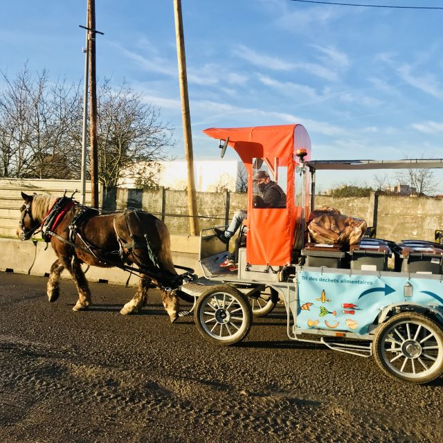 A Stains en Seine-Saint-Denis, les Alchimistes assurent une collecte des déchets alimentaires à l'aide d'un cheval / © Vianney Delourme pour Enlarge your Paris