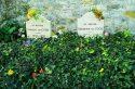 Un week-end à deux dans les pas de Van Gogh