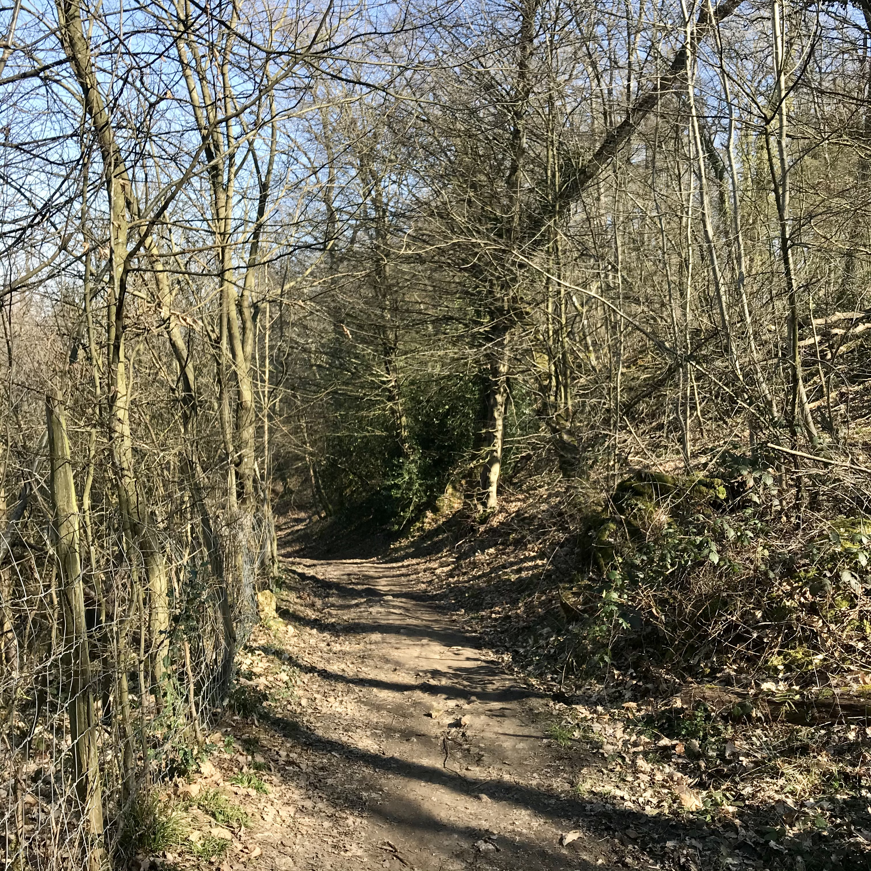 Chemin rural, Parc des Côtes Montbron près du Trou salé. Vianney Delourme pour Enlarge your Paris