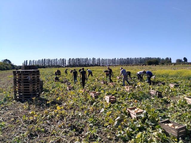 Les Vergers de Cossigny en Seine-et-Marne, ferme bio tenue par Jacques Frings, président du Groupement des agriculteurs biologiques d'Île-de-France / © Les Vergers de Cossigny