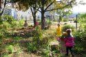 Le crowdfunding met la générosité au service de l'écologie