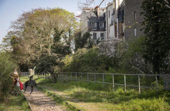 Balade sur la Petite ceinture ferroviaire avec la photographe Jérômine Derigny