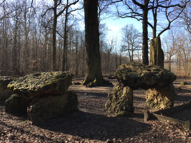 Les dolmens de la forêt de Meudon / © Steve Stillman pour Enlarge your Paris