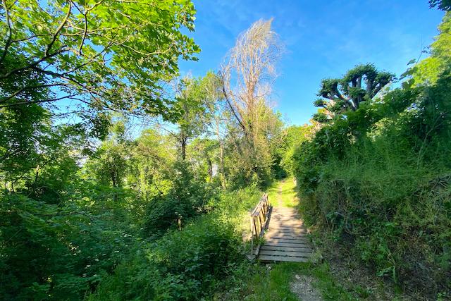 Le chemin qui mène à la champignonnière des Carrières depuis la gare de Vaux-sur-Seine / © Mélanie Rostagnat pour Enlarge your Paris