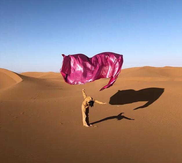 """""""Desert Rose"""", d'Ismail Zaidy, à voir dans le cadre de l'exposition """"Hôtel Sahara"""" aux Magasins généraux à Pantin jusqu'en octobre / © Ismail Zaidy & Hanin Tarek"""