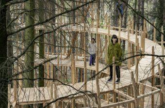 Un spectacle qui envoie du bois en forêt de Bondy