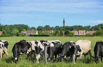 La Boissière-Ecole, le village qui pense un monde durable