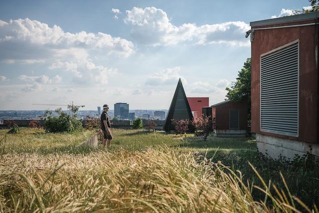 Le toit-terrasse végétalisé de Mozinor / © Pierre Duquesne pour Enlarge your Paris