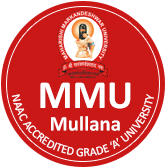 MM College of Pharmacy Ambala Logo