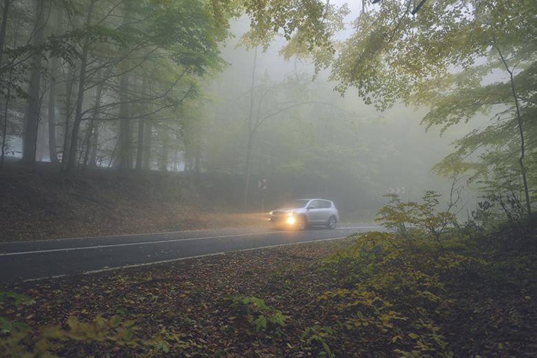 Kinh nghiệm lái xe đường sương mù cho tài mới - 2